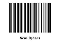scan选项